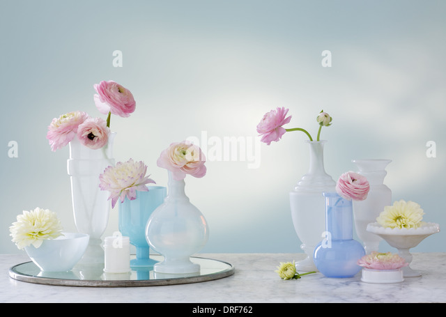 Maryland USA group of containers jugs delicate flowers Studio - Stock Image