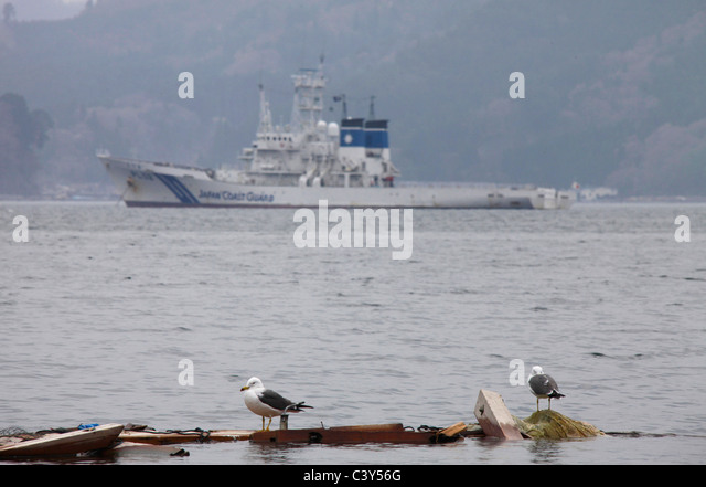 Sea birds on floating wreckage Japan Coast Guard ship PL-02 Erimo background Otsuchi-cho town Iwate Japan - Stock Image