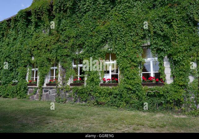 Sassi Dinner House in village Leisi, island Saaremaa. Estonia, Baltic States, EU - Stock Image