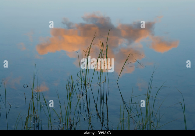 Reflection of cloud on lake Pyramid Lake, Jasper National Park, Alberta, Canada - Stock Image