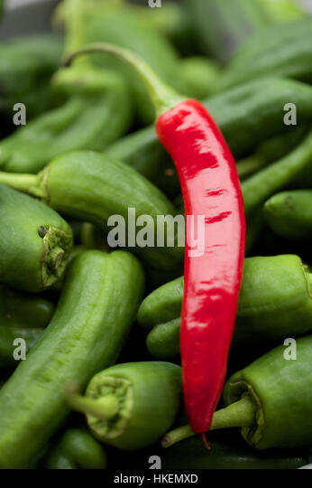 padron chilli pepper. fresh, chilli epper, food, raw. - Stock Image
