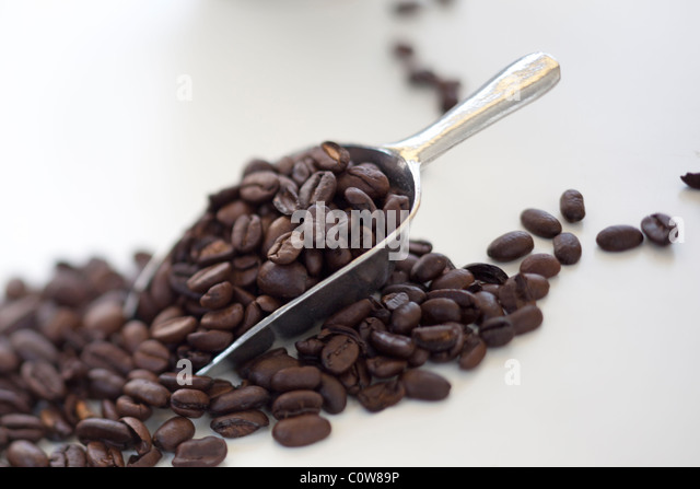 scoop of roasted coffee beans - Stock Image