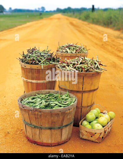 bushels of Beans and green tomatoes On Road - Stock Image