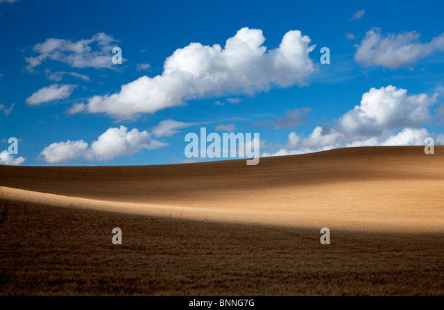 Clouds and wheat field. The Palouse, Washington - Stock Image