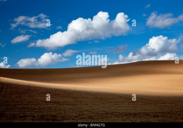 Clouds and wheat field. The Palouse, Washington - Stock Image