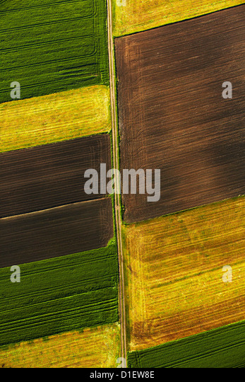 colored fields, southern Germany, aerial view - Stock Image