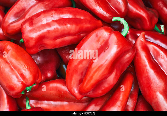 Pile of red peppers, type of sweet pepper known as Elephants Ear - Stock Image