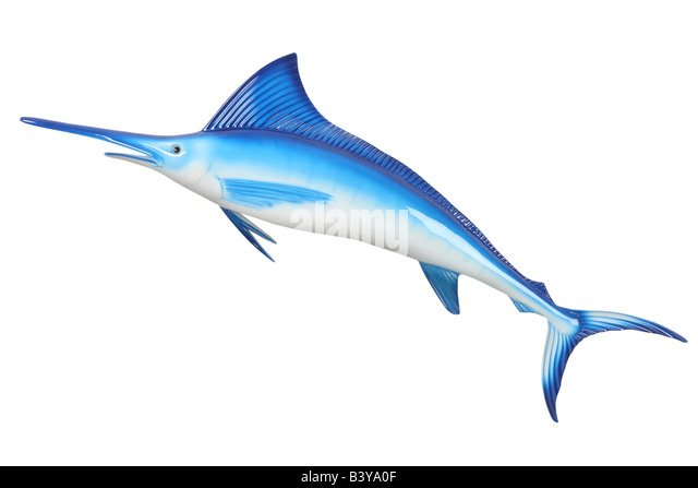 Fake toy marlin cut out isolated on white background - Stock Image