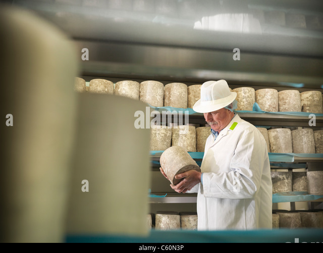 Worker checking blue cheese in factory - Stock-Bilder