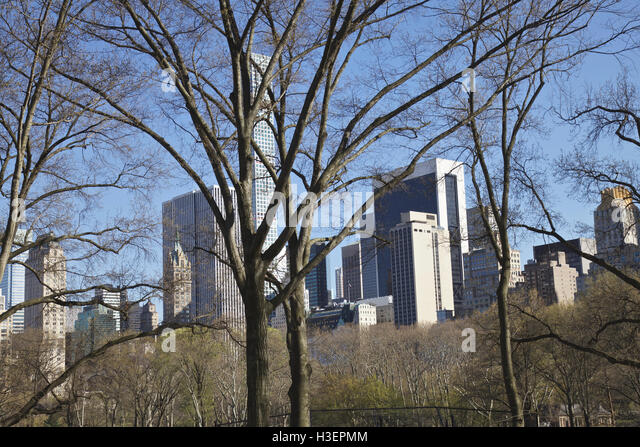 Central Park and midtown Manhattan Skyline, New York City, United States - Stock Image