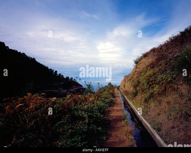 Levada Madeira Portugal Europe. Photo by Willy Matheisl - Stock Image