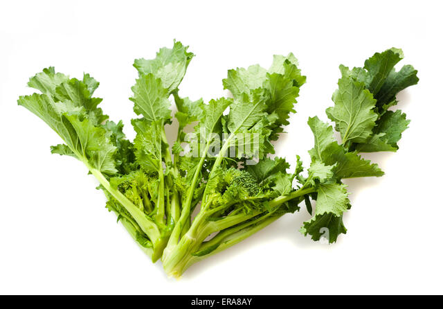 Turnip tops isolated on white - Stock Image