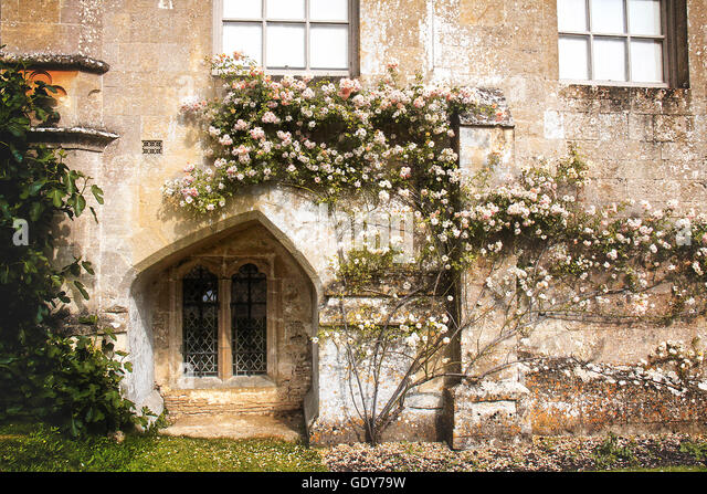 Laycock Abbey, Wiltshire - Stock Image
