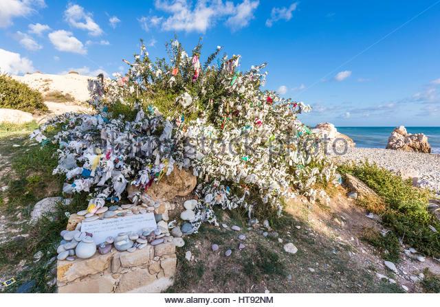 Wishing tree at Petra Tou Romiou (or Aphrodite's Rock) at Paphos, Cyprus - Stock Image