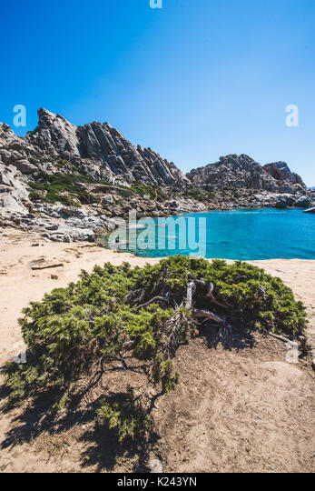 The sardinian beauties during the summer period Photo: Alessandro Bosio - Stock Image