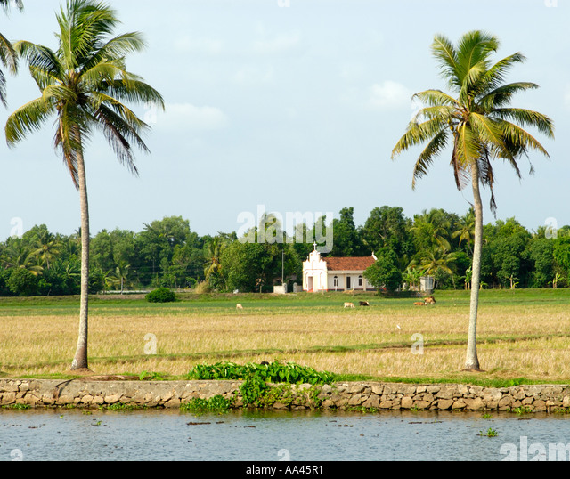 village scenery kerala stock photos amp village scenery