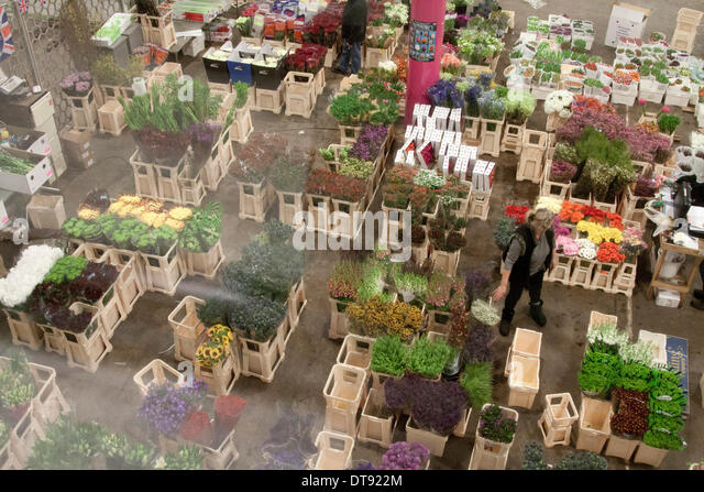 Vauxhall London, UK. 12th February 2014. A market stall with a  wide variety of  flowers in New Covent Garden a - Stock Image