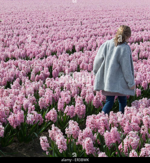 Girl walking through a field of pink hyacinth flowers - Stock Image