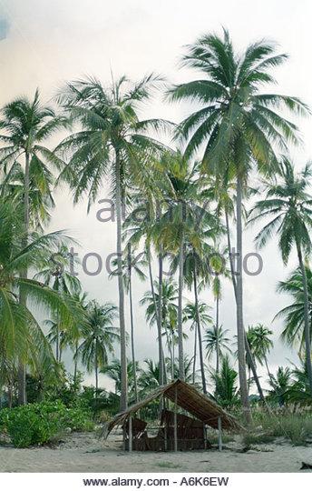 business bamboo massage north palm beach