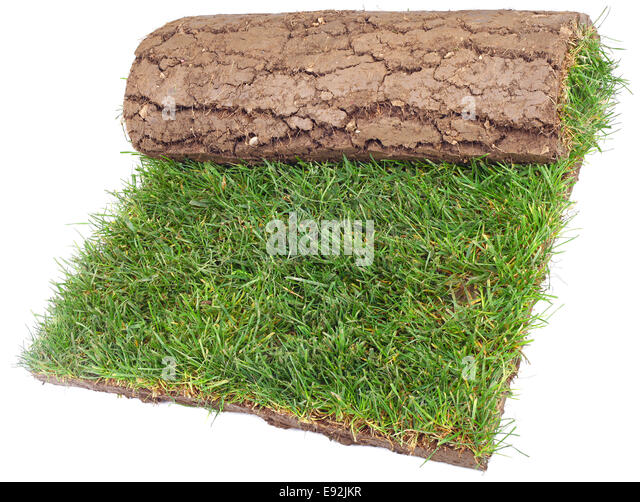 Landscaping Grass Roll : Lawn roll stock photos images alamy