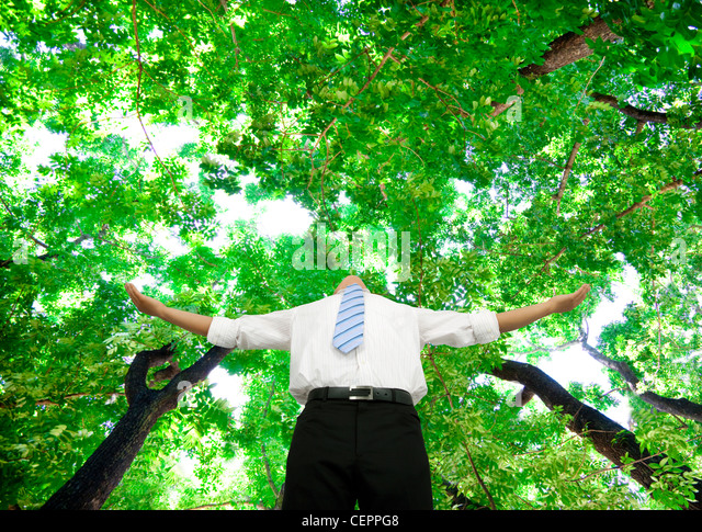 relaxed businessman stand in the forest - Stock Image