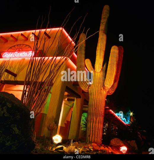 Cactus Neon Stock Photos Cactus Neon Stock Images Alamy