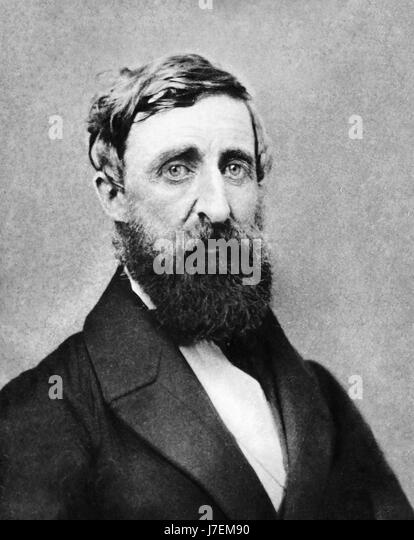HENRY DAVID THOREAU (1817-1862) American naturalist, writer, author and philosopher in August 1861 - Stock-Bilder