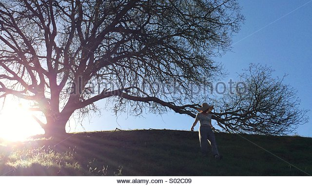 Woman By a Tree On a Hill - Stock Image