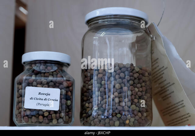 'Roveja', a kind of pea, typical from Perugia,Tuscany,Italy,Europe - Stock Image
