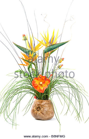 Exotic flower display in coconut shell - Stock Image