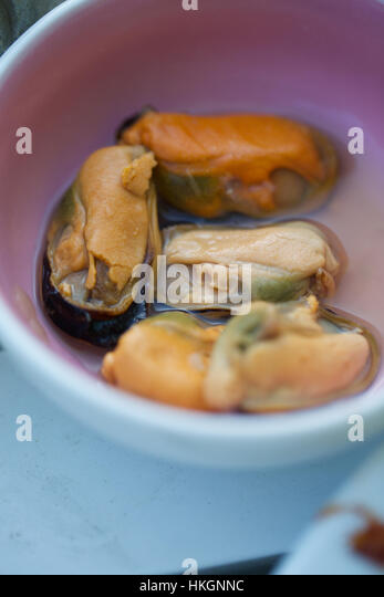 cooked mussels in their own sauce - Stock-Bilder