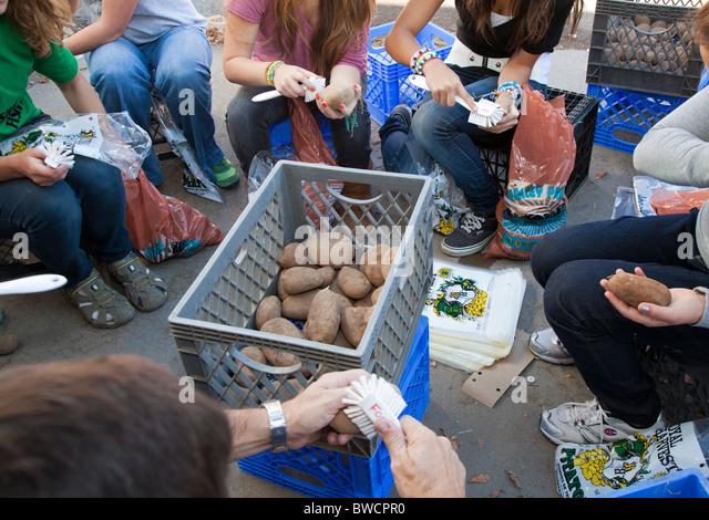 Volunteers Clean Potatoes at Food Bank - Stock Image