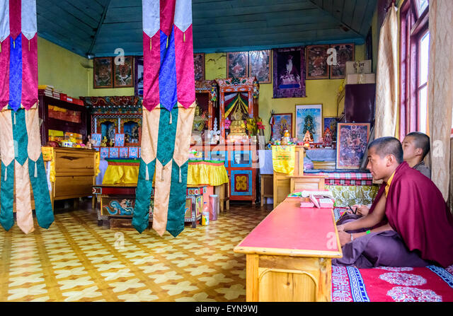 Buddhist priests, Lamas, praying inside a monastery in India, reading traditional scripture with copy space - Stock Image