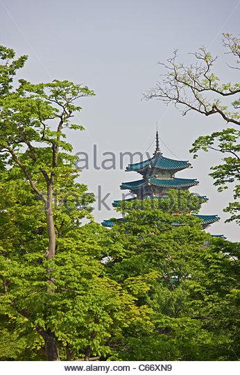 Gyeongbokgung palace behind trees - Stock Image