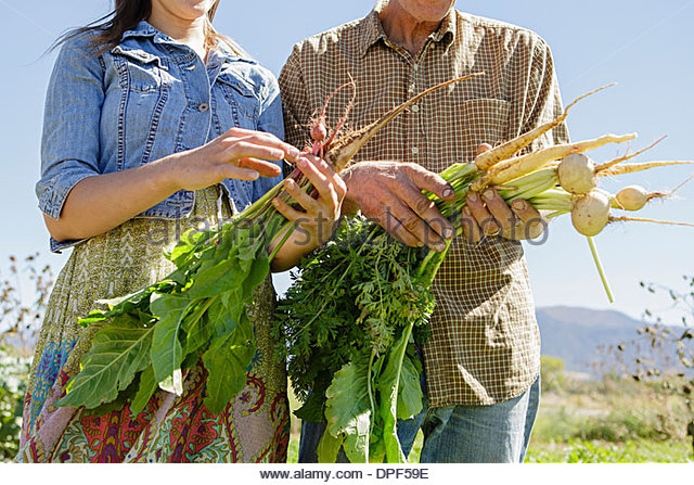 Cropped image of farming father and daughter holding root vegetables - Stock Image