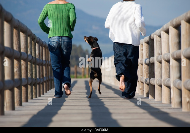 Two people running with dog - Stock Image