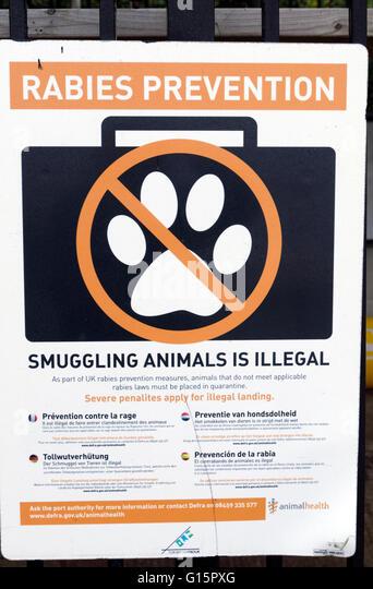 Rabies Prevention notice, Brixham, Devon, England. - Stock Image