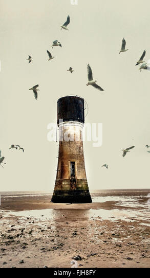 old abandoned lighthouse on the beach and seagulls - Stock Image