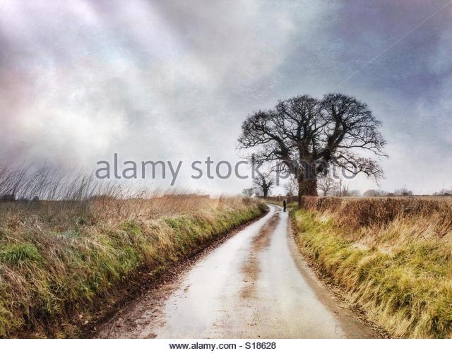 Country Lane, Kent, UK - Stock Image