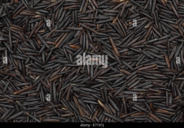 Wild Rice. Closeup. - Stock Image