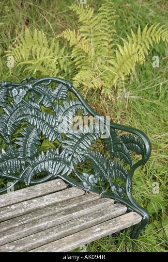 UK, England, Rothbury, Cragside, bench, fern, - Stock Image