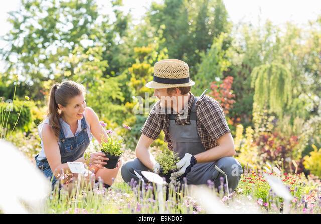 Gardeners talking while gardening at plant nursery - Stock Image