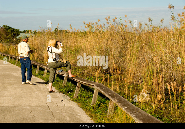 Everglades National Park Florida couple Anhinga Trail tourists wildlife watching ecotourism ecotravel 'river - Stock Image
