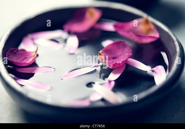 aromatherapy - Stock Image