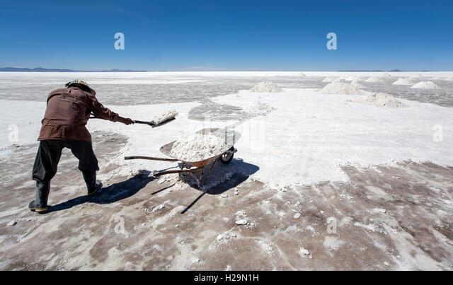 Worker collecting salt. Salar de Uyuni. Bolivia - Stock Image