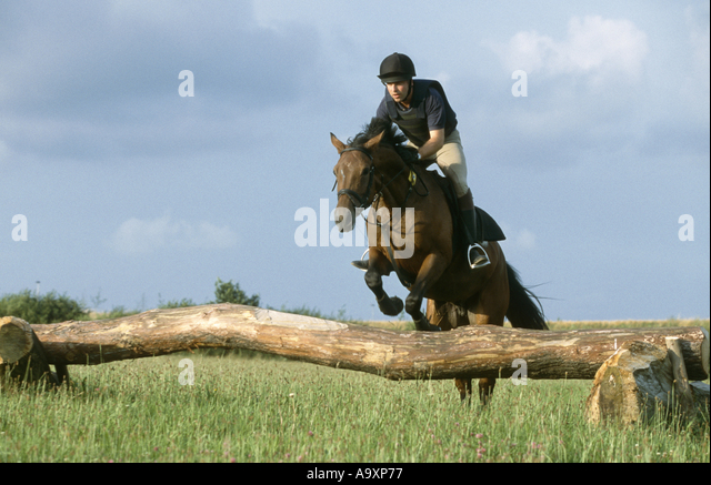 rider and horse jumping over show jump, endurance competition. - Stock Image