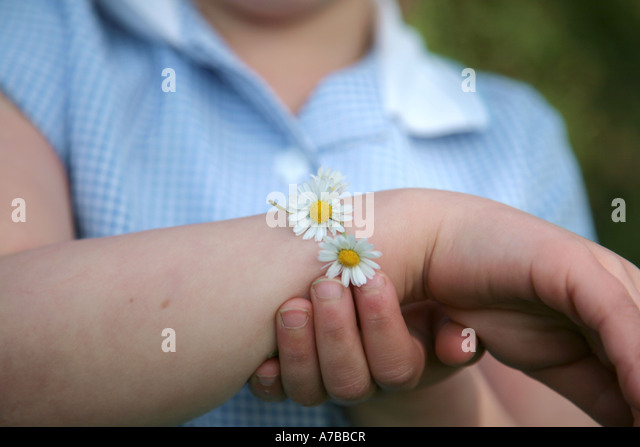 daisy chain - Stock-Bilder