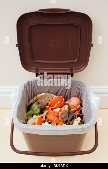 Food waste in indoor food waste bin with lid open indoors at home. Wales, UK, Britain - Stock Image
