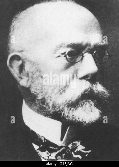 an overview of bacillus anthracis by robert koch in 1877 Read the full-text online edition of essays of robert koch (1987)  preface  introduction the etiology of anthrax, founded on the course of development of  the bacillus anthracis (1876) investigations of the etiology of wound infections ( 1878).