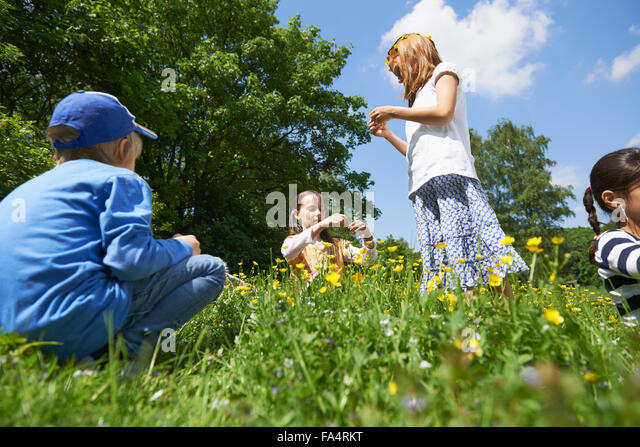Group of friends making floral crown, Munich, Bavaria, Germany - Stock Image